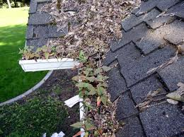 gutter-guards-fishers-carmel-cicero-noblesville-in-indiana